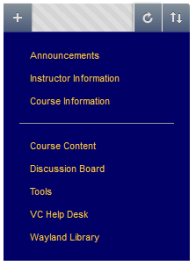 Blue background, gold letters in tab formation of course menu